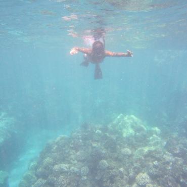 Lanai Snorkling 065