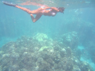 Lanai Snorkling 070